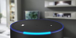 Dotkumo Amazon Alexa Skill